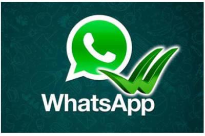 Recuperare i messaggi su WhatsApp doppie-spunte-blu-whatsapp