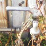 Recensione Archos 70 Copper B 006