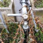 Recensione Cubot Zorro 4G IMG_20150119_160528