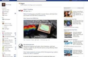 facebook feed miniatura