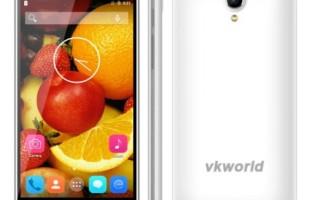 VKWorld VK560