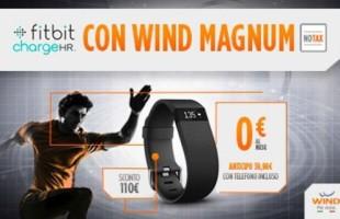 Wind Magnum Fitbit