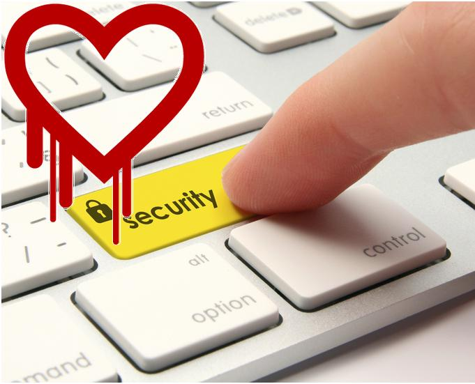 Heartbleed bug, dove sono in pericolo le password?