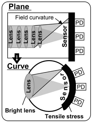 Curved-Sony-CMOS-sensor