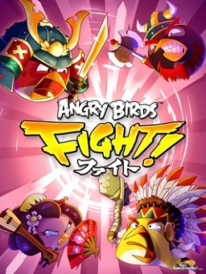 Anngry-Birds-Fight