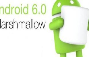 Distribuzione Android