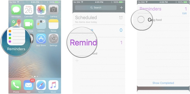 Pulire Reminders App iPhone