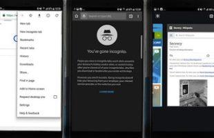 Abilitare Navigazione Privata Android
